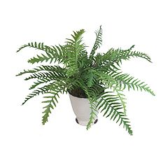 SONOMA Goods for Life™ Artificial Potted Fern Table Decor