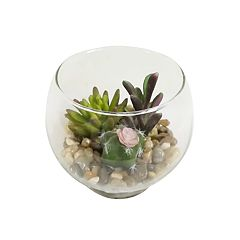SONOMA Goods for Life™ Artificial Succulent & Cactus Table Decor