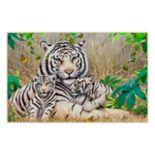 Brumlow Mills White Tiger & Cub Wildlife Printed Rug