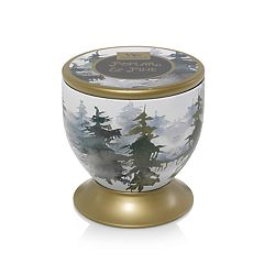 WoodWick Gallerie Poplar & Pine 8.5-oz. Tree Design Candle Tin