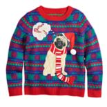 Boys 8-20 Pug Holiday Dreams Sweater