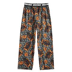 Boys 4-16 Jurassic World Lounge Pants