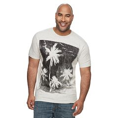 Big & Tall Apt. 9® Palm Tree Graphic Tee