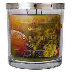 SONOMA Goods for Life™ Harvest Pumpkin Patch 14-oz. Candle Jar