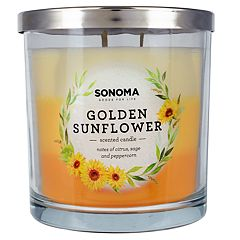 SONOMA Goods for Life™ Golden Sunflower 14-oz. Candle Jar