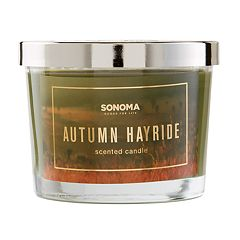 SONOMA Goods for Life™ Autumn Hayride 5-oz. Candle Jar