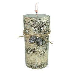 SONOMA Goods for Life™ Harvest Gathering 14.7-oz. Pillar Candle