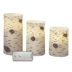 Apothecary Flameless Faux Birch LED Candle & Remote 4-piece Set