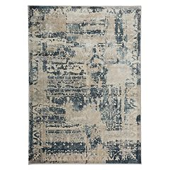World Rug Gallery Portofino Traditional Distressed Vintage Ornate Rug