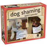 Dog Shaming 2019 Daily Desk Calendar