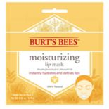 Burt's Bees Moisturizing Lip Mask