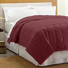 Cuddl Duds Down Alternative Blanket