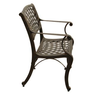 Traditional Bronze Finish Indoor  / Outdoor Arm Chair