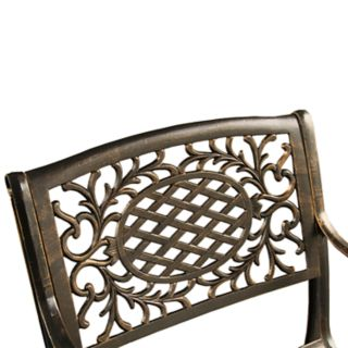 Ornate Bronze Finish Indoor  / Outdoor Dining Chair