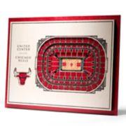 Chicago Bulls 3D Stadium Wall Art