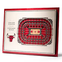 Chicago Bulls 3D Stadium Wall Art