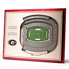 Georgia Bulldogs 3D Stadium Wall Art