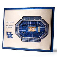 Kentucky Wildcats 3D Stadium Wall Art