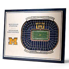 Michigan Wolverines 3D Stadium Wall Art