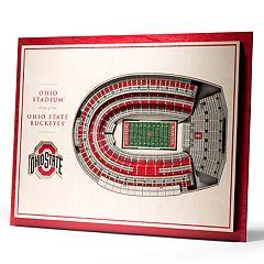 Ohio State Buckeyes 3D Stadium Wall Art