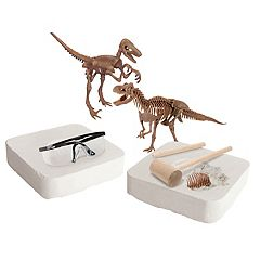 Discovery Dinosaur Fossil Dig