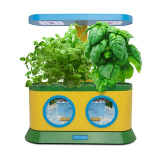 AeroGarden Herbie Kids Garden with Pizza Party Activity Kit?