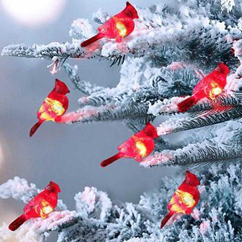 cardinal string lights