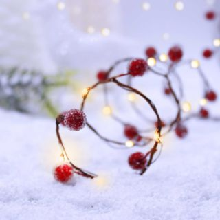 Manor Lane 10-ft. Artificial Berry String Lights