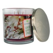 SONOMA Goods for Life? Winter Berry & Spruce 14-oz. Candle Jar