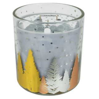SONOMA Goods for Life? All That Sparkles 14-oz. Candle Jar