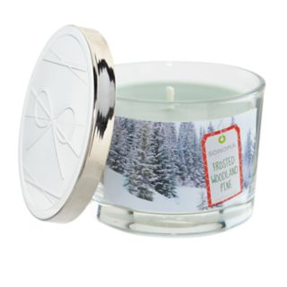 SONOMA Goods for Life? Frosted Woodland Pine 5-oz. Candle Jar