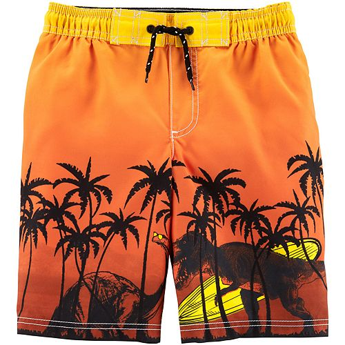 d66dc52851 Boys 4-8 Carter's Tropical Dinosaur Swim Trunks
