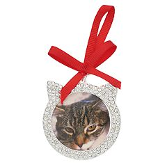 Pet Friends Holiday Cat Photo Frame Pin