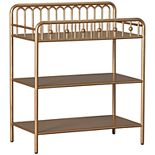 Little Seeds Monarch Hill Ivy Metal Changing Table