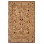 Safavieh Anatolia Florence Framed Floral Wool Rug
