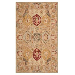 Safavieh Anatolia Galelyn Framed Floral Wool Rug