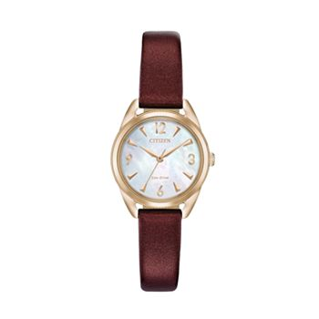 Drive from Citizen Eco-Drive Women's LTR Vegan Leather Watch - EM0683-04D