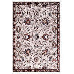 Concord Global Olympus Mahal Framed Floral Rug