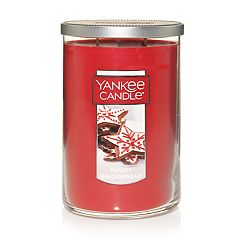 Yankee Candle Frosty Gingerbread 22-oz. Tumbler Large Candle Jar