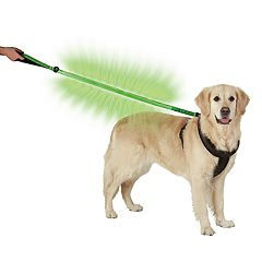 Original Fun Factory LED Dog Leash