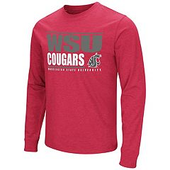 Men's Washington State Cougars Banner Tee