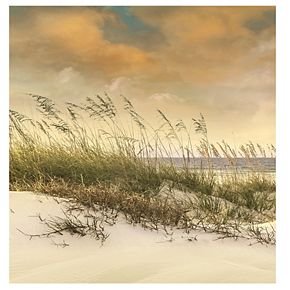 "New View West Wind 16"" x 16"" Canvas Wall Art"