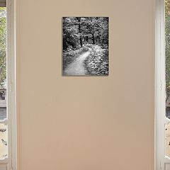 New View Winding Path 11' x 14' Canvas Wall Art