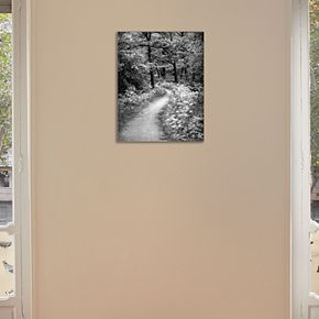 """New View Winding Path 11"""" x 14"""" Canvas Wall Art"""