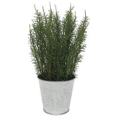 SONOMA Goods for Life™ Artificial Rosemary Table Decor