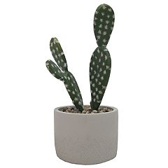 SONOMA Goods for Life™ Artificial Cactus Table Decor