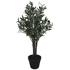 SONOMA Goods for Life™ Artificial Olive Tree Table Decor
