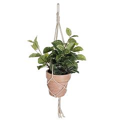 SONOMA Goods for Life™ Artificial House Plant Table Decor