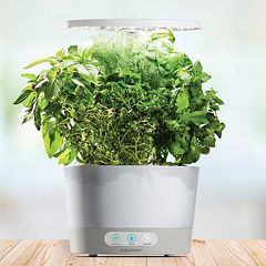 AeroGarden Harvest 360 with Gourmet Herb Seed Pod Kit