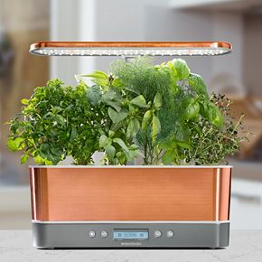AeroGarden Harvest Elite Slim with Gourmet Herb Seed Pod Kit